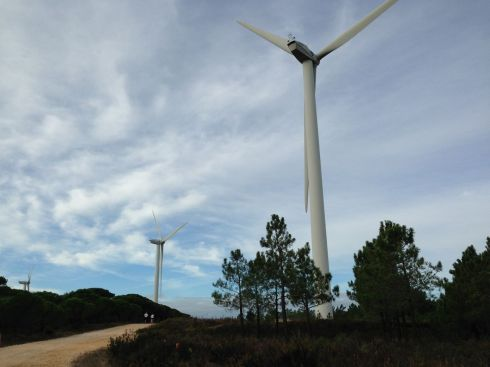Running by the wind turbines