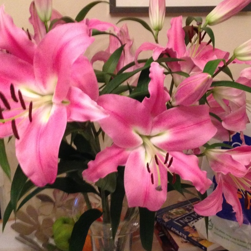 The flowers that my wonderful husband bought for me.