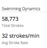 Crazy Garmin swim data