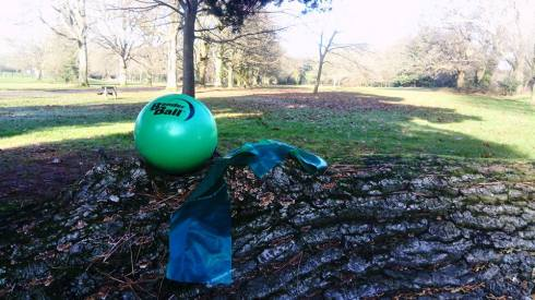 Exercise balls and resistance bands