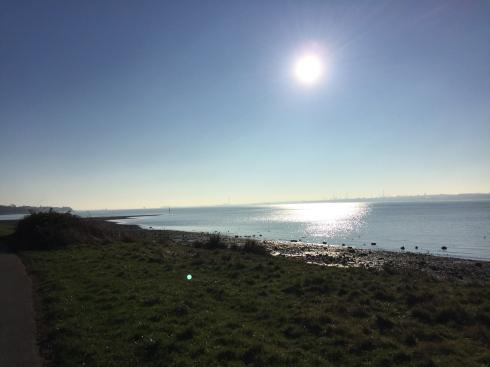Beautiful Weston Shore